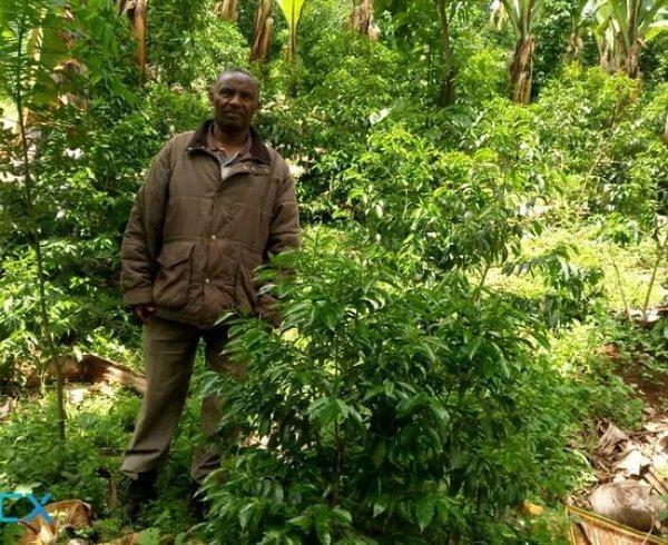 Ethiopian coffee farmer who supplies Yahava with Perth's best coffee.