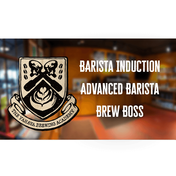 Learn how to brew Perth's best coffee wth Yahava through our induction, advanced or brew boss courses.